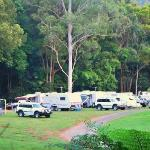 Mt Warning Caravan Park