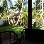 unser kleiner Tropengarten mit Therapiehütte