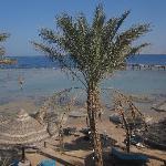 visione della spiaggia dal bar