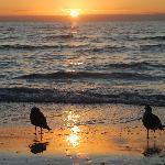 Even the seagulls were quiet