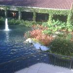 Another view of the pond area outside the main lobby