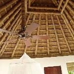 interior of roof with ceiling fan and mosquito net