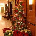 Front/Main lobby area