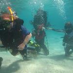 lagoon dive