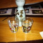 Warm Sake and Waving Cats!