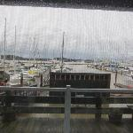 Rainy view from our room