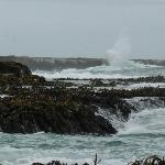 raging sea at curio bay