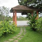 Entry from the Backwaters