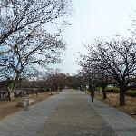 大阪城外一景