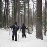 Windblown Cross Country Ski Area