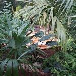 Privatgarten mit Außenwanne