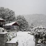 Nainital from Naini Retreat