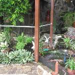 Foto de Palm Tree Resort