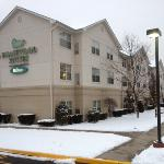 Outside of Homewood Suites at the end of January 2012.