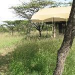 Zelt mit Umgebung