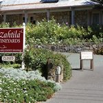 Foto Laura Michael Wines - Zahtila Vineyards
