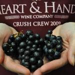 Our wines are handcrafted with a commitment to excellence.