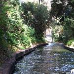 one of the canals.