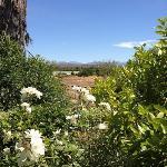 View towards the Swartberg Mountains