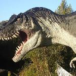 Rex de 14 mts. de largo por 5 de alto (aprox.)
