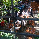 Pleasant Backyard Beer Garden