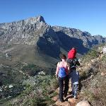 The majestic Cape Mountains