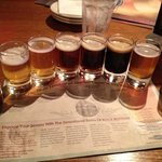 Sampler Flight