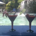 The only Swim up Bar in Hervey Bay
