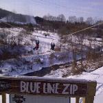 Zip Line at Adventure Center right across street from Hope Lodge