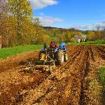 Spring on the Farm in the romantic Vermont countryside