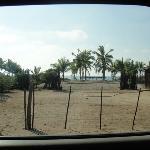 Palapa en la playa!!