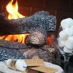 Make Smores at Carriage House in Your Private Courtyard!