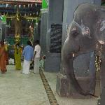 Uppiliappan Temple, Kumbakonam: Entrance to the temple with the elephant blessing devotees.