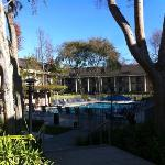 pool and buildings
