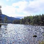 Start of  Loch An Eilein circular walk