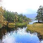 Getting close to end of Loch Morlich walk