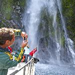 Milford Sound Nature Cruises - Real Journeys