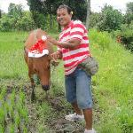 Ketut and his prize bull, donated by globally concerned citizens of SAS