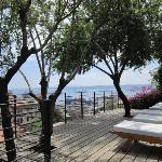 Zero Hotel Garden