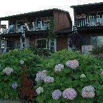 Winfield Inn