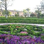 jardines del parterre