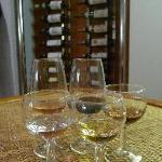 Wine Tasting(2)