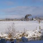 Beautiful even in December!