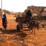 A street in town of Bamako - the donkey carts are the garbage collectors