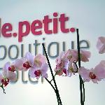 Recepción Le Petit