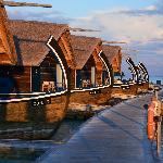 Jetty around lagoon (Dhoni suites)