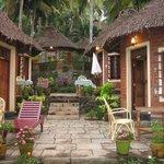 Foto de Somatheeram Ayurvedic Health Resort