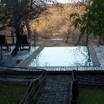 Pool mit Sicht aufs Wasserloch