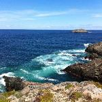 View from Cape Bonavista