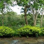 Photo of Sambiya River Lodge